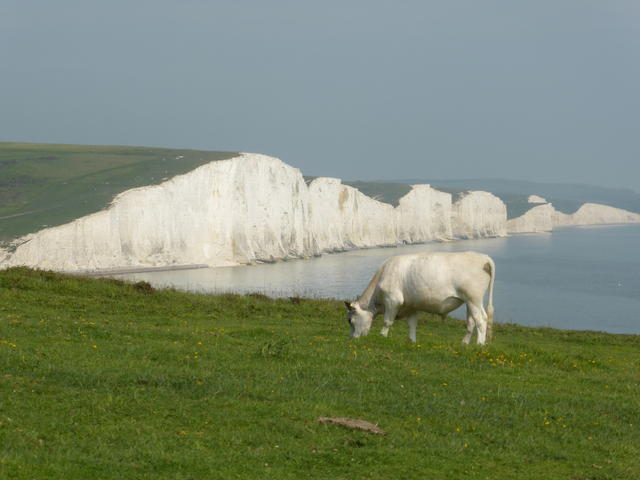1. The Seven Sisters